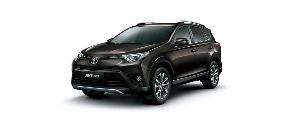 RAV 4 Dark Brown Mica Metallic