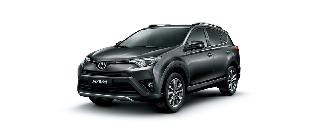 RAV 4 Gray Metallic